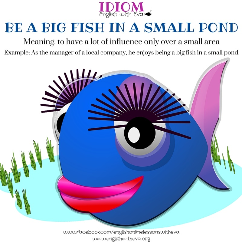 Illustrations a practical guide to technology in elt for Big fish in a small pond